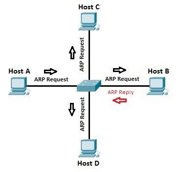 arp process