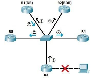 ospf dr bdr topology