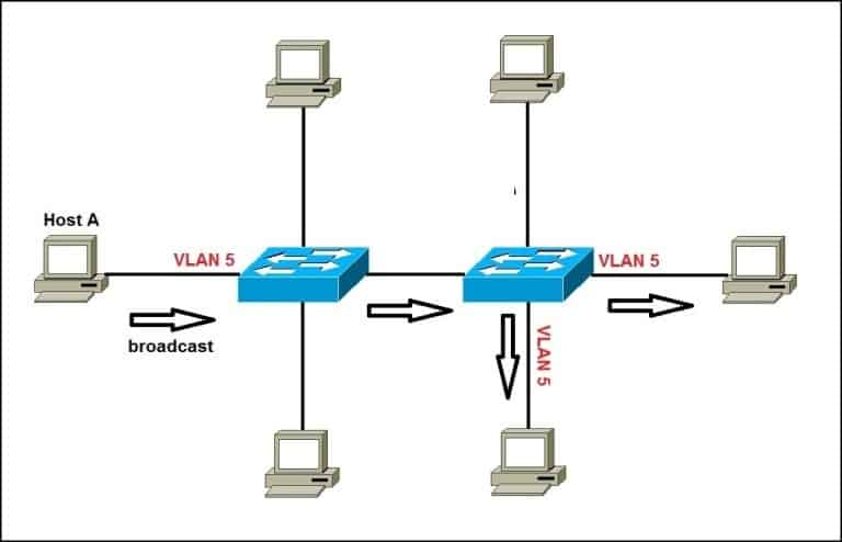 A network with VLANs